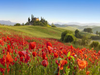 TOSCANA