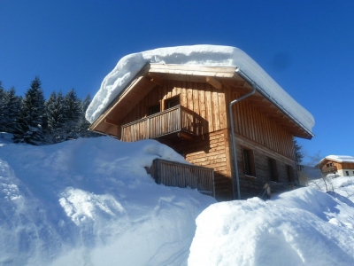 AlpinChalets Dachstein West